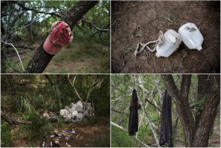 Signs of life, as well as death, can be found on many Brooks County ranches.