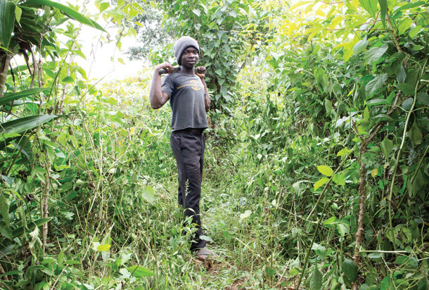 Francis Baah on his family's farm. | Credit: PETER DICAMPO/MOTHER JONES