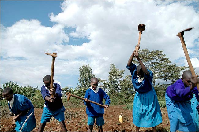 Students in Sauri, Kenya, till fields as part of the Millennium Village Project. | Credit: Guillaume Bonn