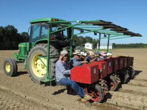 Farmworkers at Keith Smith's farm in Alabama | Credit: COURTESY MOTHER JONES
